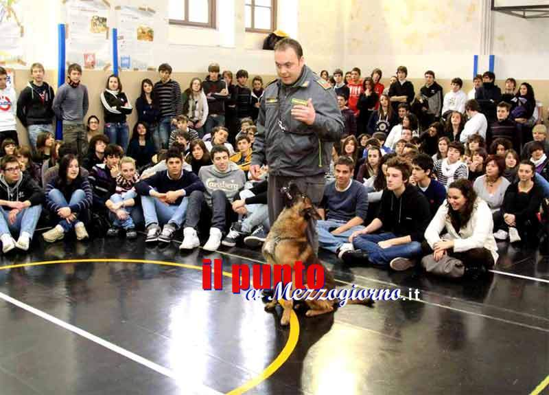 gay frosinone incontri gay ravenna