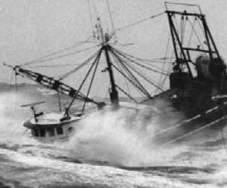 Peschereccio fantasma nel Golfo di Gaeta, la Capitaneria lo trova e lo multa