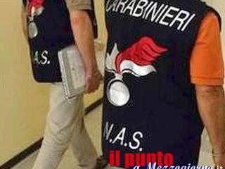 Latina: Deposito di stupefacenti scoperto dal N.A.S, arrestato e condannato un 30enne