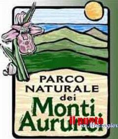 Parco monti Aurunci: Diecimila piante per i comuni delle province di Frosinone e Latina