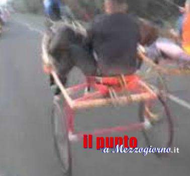 Corse clandestine di cavalli sullo stradone Fiat a Cassino, quattro persone denunciate