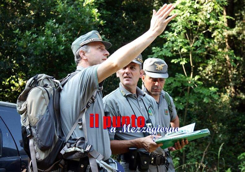 Disboscamento selvaggio a Itri, denunciato 30enne