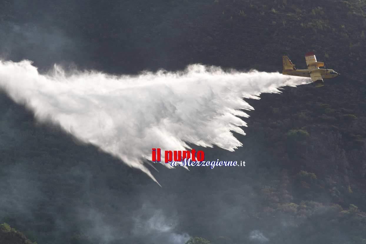 Notte di fuoco su monte Sambucaro, l'incendio ha minacciato case e distrutto uliveti – FOTO E VIDEO