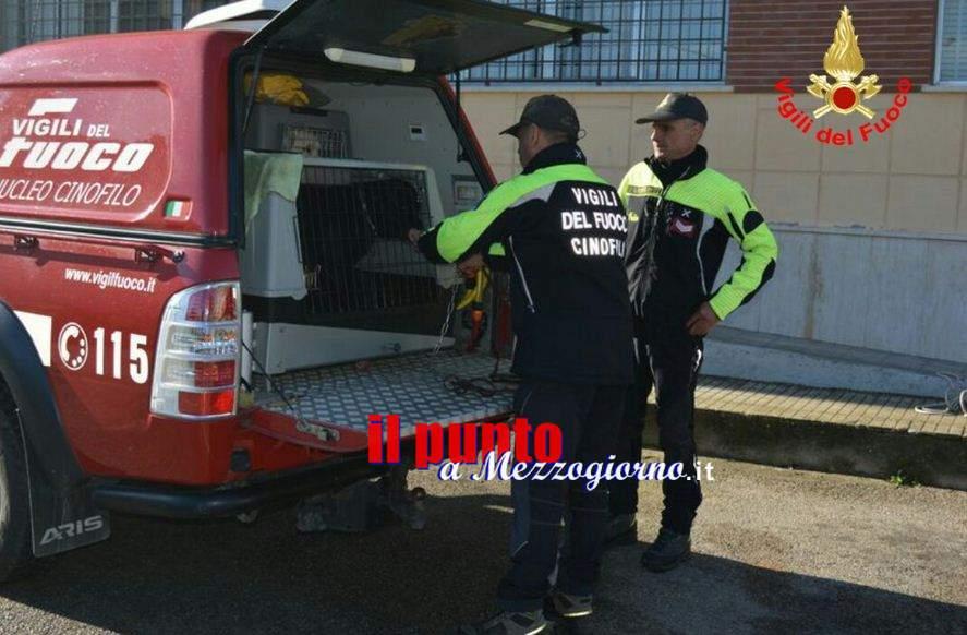 Terremoto, evacuato ospedale di Amatrice, in arrivo unità cinofile per ricerca persone sotto le macerie