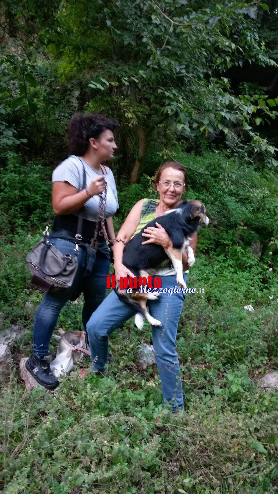 Abbandonano cane legato ad una pianta in campagna a Sant'Elia