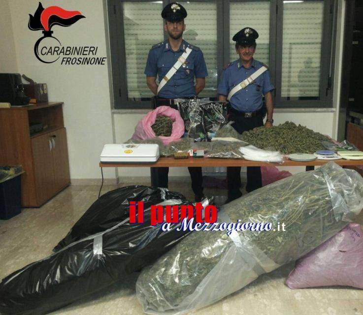 Ventidue chili di marijuana sequestrati a Torrice
