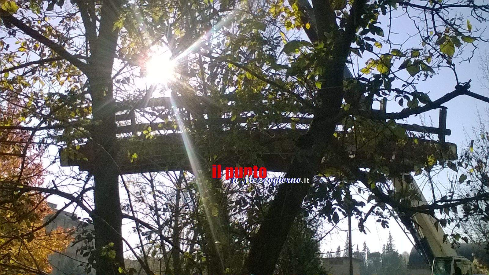 Iniziati lavori manutenzione al ponte in legno nella villa comunale