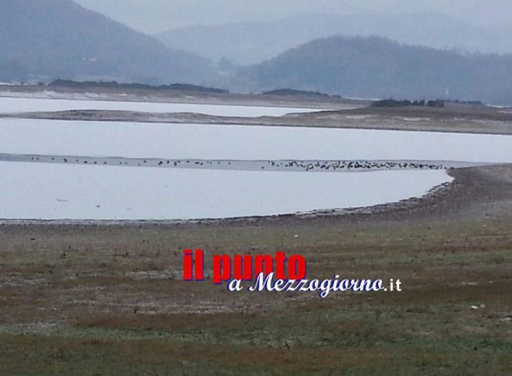 Strage di oche bianche sul Lago di Canterno, il Parco Monti Ausoni condanna l'azione e rafforza l'attività di vigilanza dei Guardiaparco