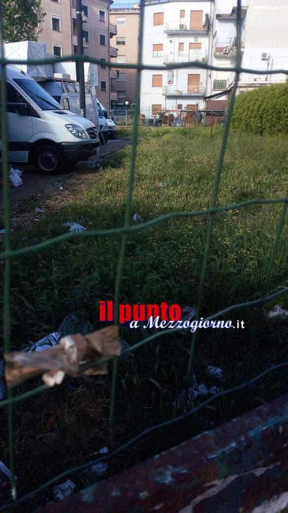 Piazza Benedetto XVI a Cassino, tra erbacce, cavi scoperti e qualche serpente