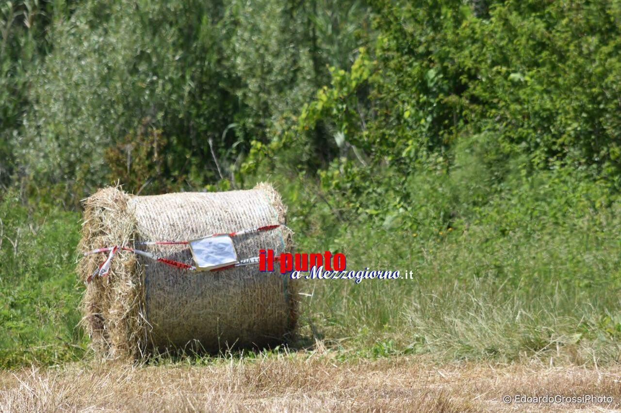 Balle di fieno sequestrate tra Cassino e Sant'Elia, agricoltore falcia nonostante il divieto
