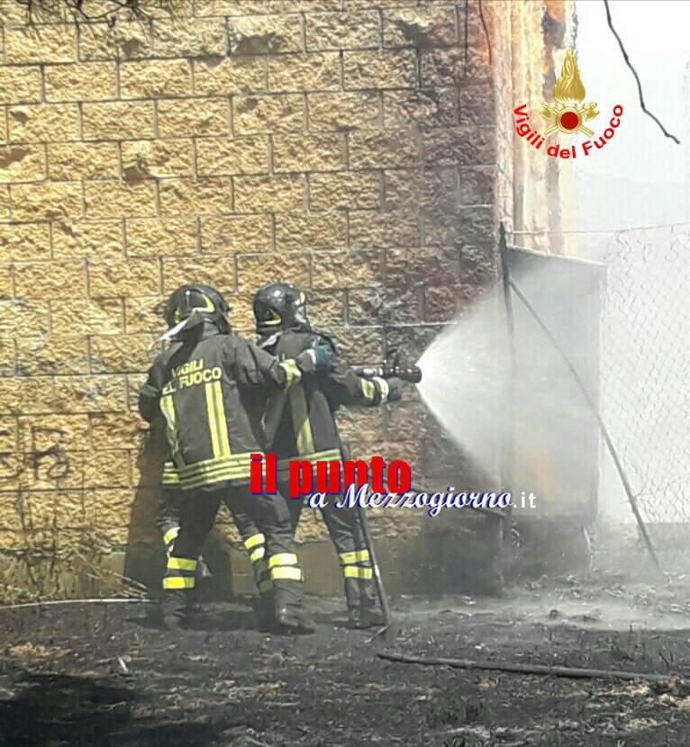 Incendio di sterpaglie minaccia scuola elementare a Cisterna