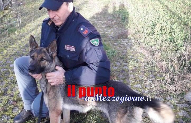 Droga nella casa di accoglienza stranieri a Frosinone, sequestrati 20 grammi di canapa