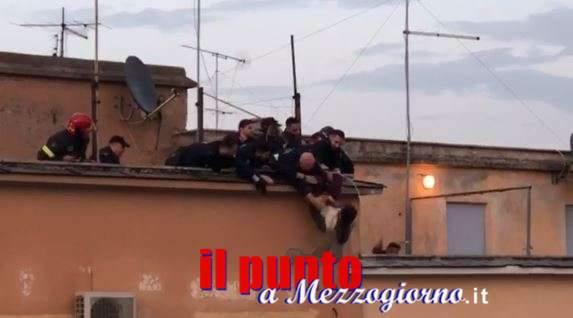 VIDEO – Preso per i piedi mentre cade dal terrazzo di un palazzo