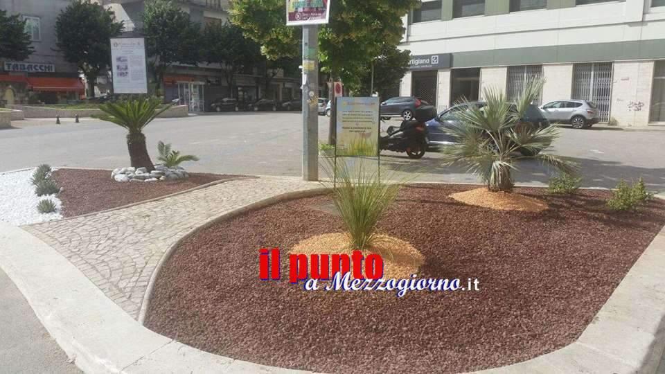 Cassino, rubate le piante dall'area verde di piazza XV Febbraio