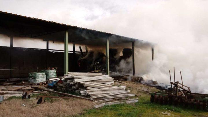 Ferentino, un incendio distrugge oltre quaranta balle di fieno in un'azienda agricola