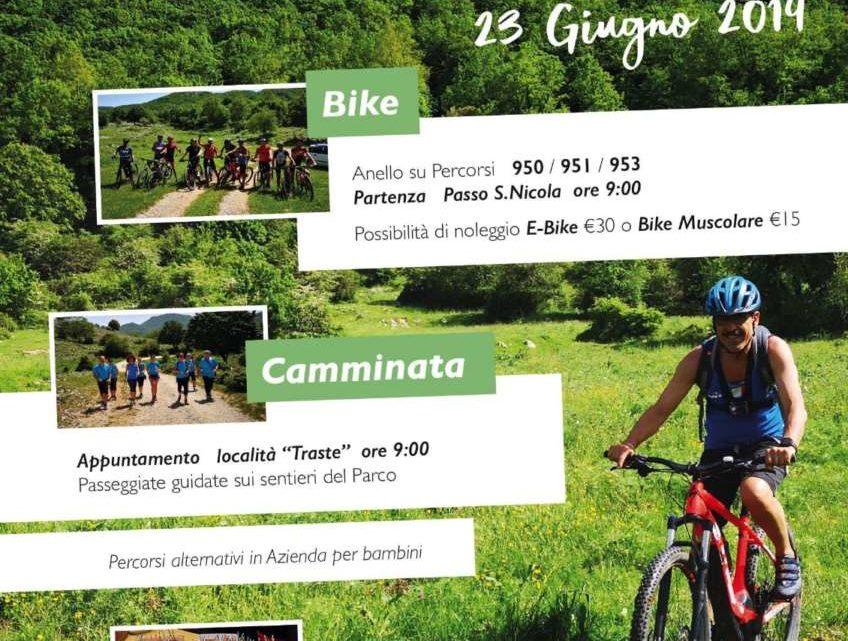 Enotrek E Bike Tra I Monti Aurunci Durante La Domenica Plastic Free