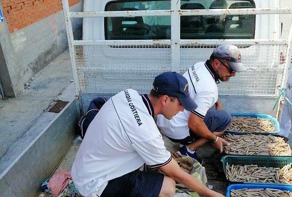 Pescatore multato dalla Guardia costiera di Formia, trasportava il pescato con un mezzo non idoneo