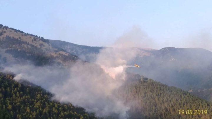 Inceneriti 70 ettari di bosco a San Donato, spegnimento ostacolato dagli alberi abbattuti dalla nevicata del 2012