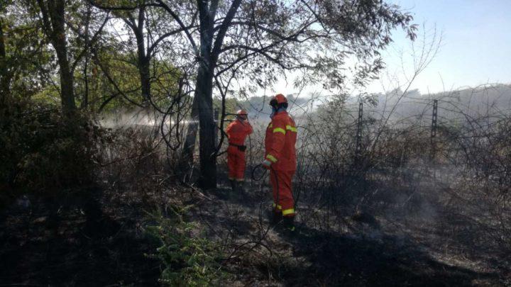 Incendio ad albano Laziale, arsi dieci ettari di sterpaglie vicino ad ex discarica