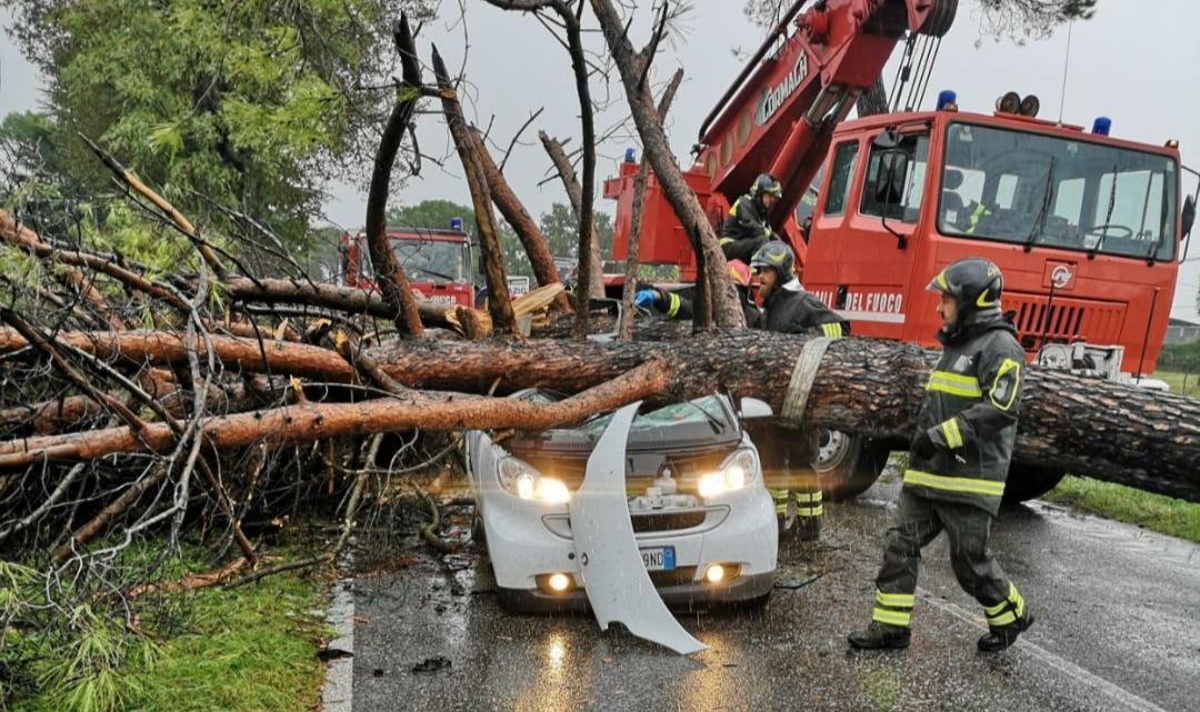 Morirono schiacciati da un albero sulla Casilina a Castrocielo, sei indagati