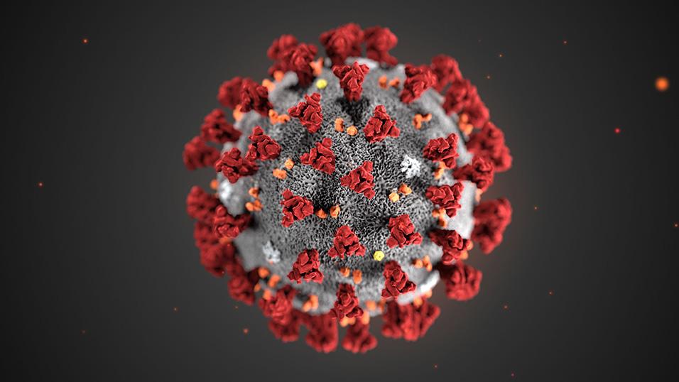 Coronavirus, 71 casi in struttura sociale per anziani ad Itri