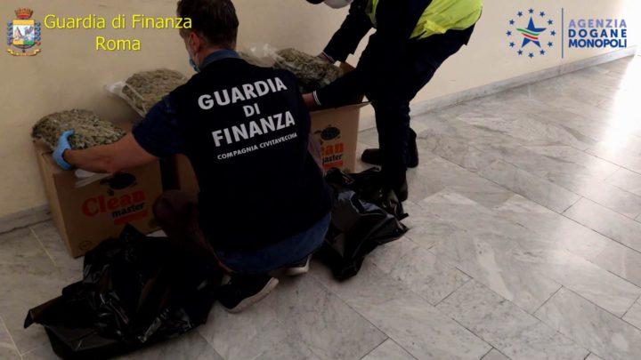 Narcotrafficante greco intercettato al porto di Civitavecchia con 143 chili di marijuana