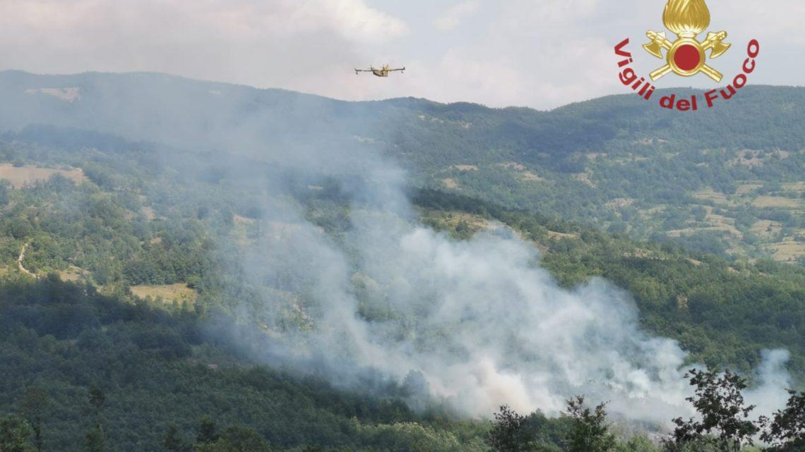 Cinque ettari di bosco bruciati a Rionero Sannitico