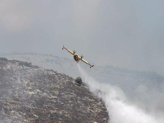 Incendio boschivo a Monte San Giovanni Campano, denunciato 33enne