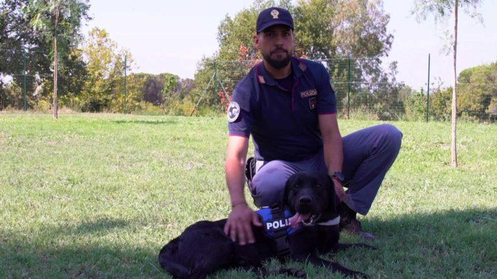 Il video spot della Polizia di Stato contro l'abbandono dei cani