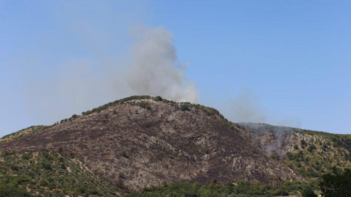 Pico – Incendio devasta monte La Taverna