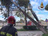 Forte vento, Vigili del Fuoco impegnati in tutta la provincia di Caserta
