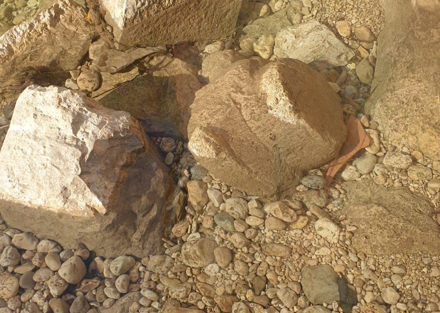 """Il fiume Cosa a Frosinone """"scava"""" resti archeologici, rinvenuto capitello tuscanico"""