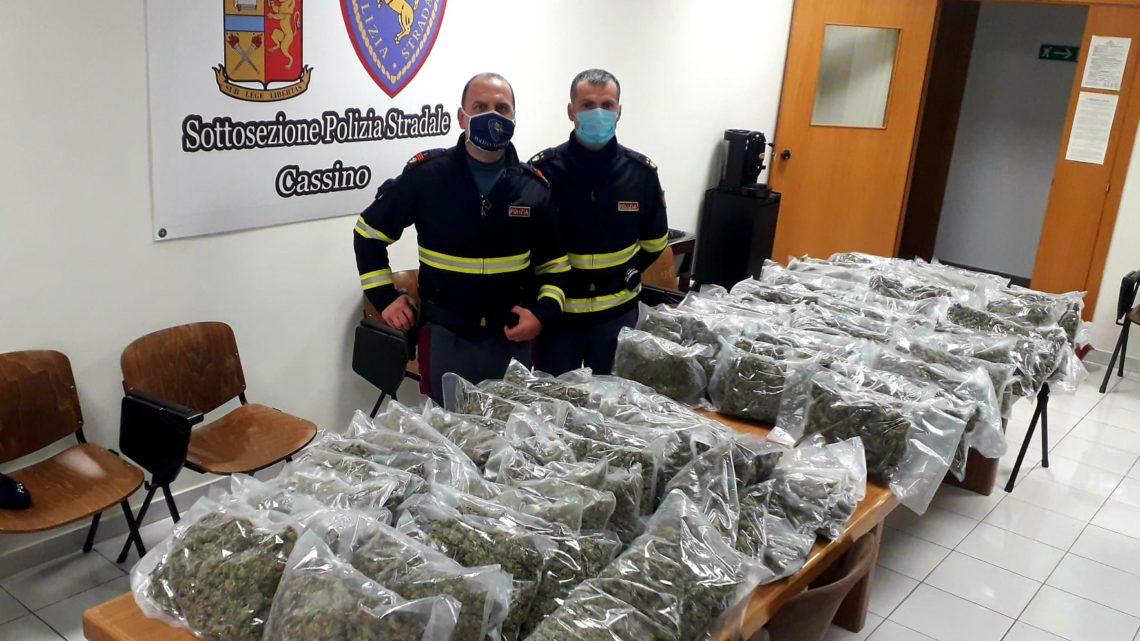 In viaggio con 50chili di marijuana arrestato dagli agenti della Stradale di Cassino
