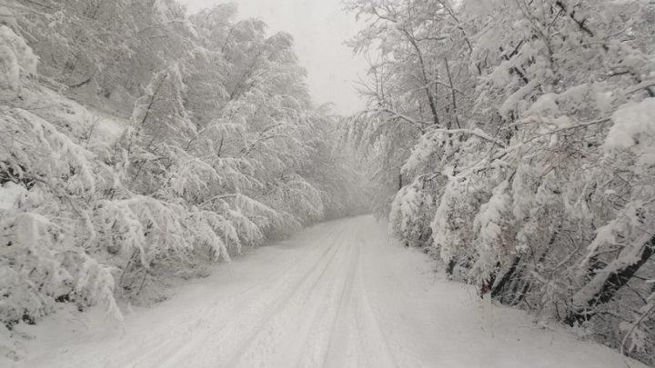 Maltempo, Protezione civile Lazio: allerta gialla per neve da domani pomeriggio